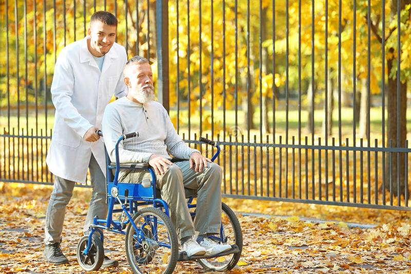 Young caregiver walking with senior man. Young caregiver walking with senior men in park royalty free stock images