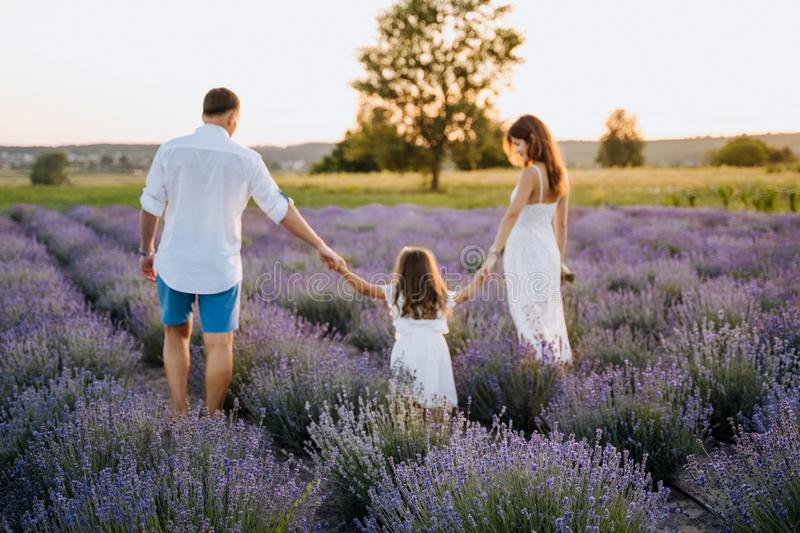 Young Caucasian Family in Purple Lavender Field royalty free stock photo