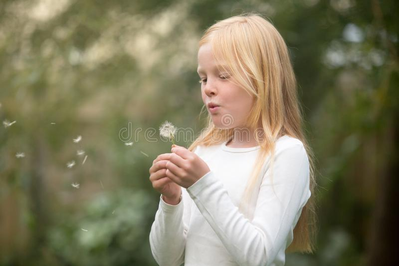 Young caucasian girl wishes on a dandelion royalty free stock images