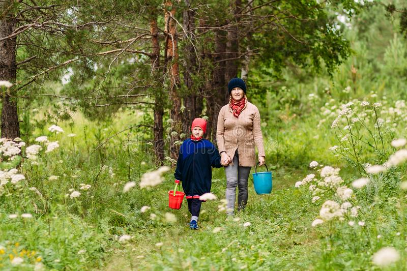 Young Caucasian grandmother and boy walking in the woods in the summer. grandmother holds grandson`s hand stock images