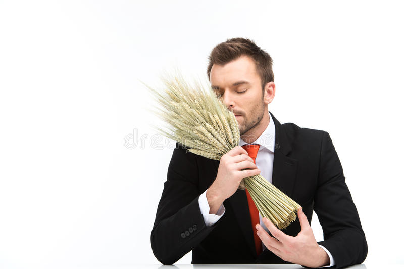 Young caucasian man smells odour of fresh wheat. royalty free stock image