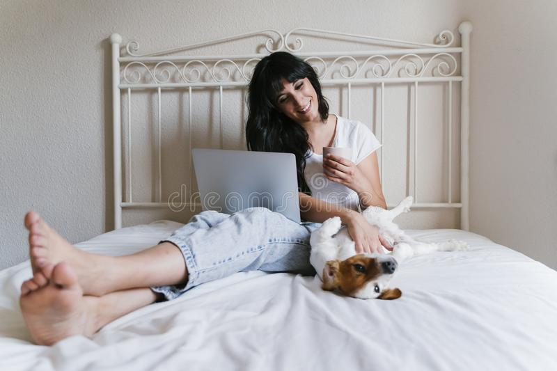 Young caucasian woman on bed working on laptop. Cute small dog lying besides. Love for animals and technology concept. Lifestyle. Indoors stock images