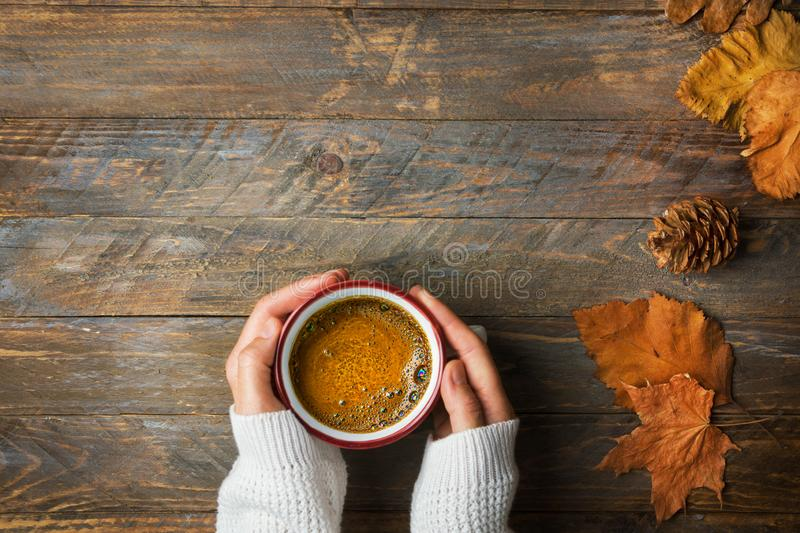 Young caucasian woman girl in knitted white sweater holds in hands mug with freshly brewed coffee dry orange leaves on wood. Young caucasian woman girl in stock photo