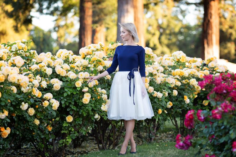 Young Caucasian woman walking in a rose garden near yellow roses. Full body portrait stock image