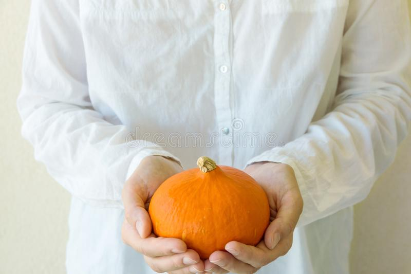 Young caucasian woman in white cotton shirt holds in hands small orange heirloom hokkaido pumpkin on wall background. Thanksgiving stock image