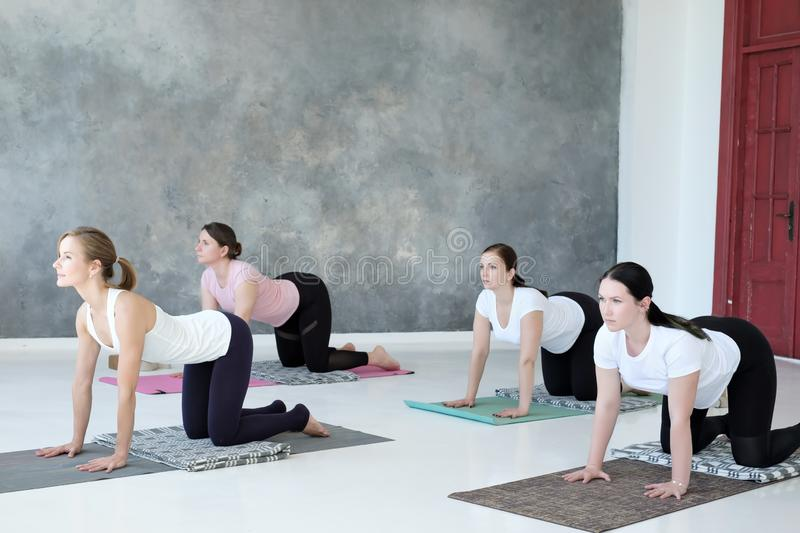 Young caucasian women practicing yoga doing pilates exercise. stock photo