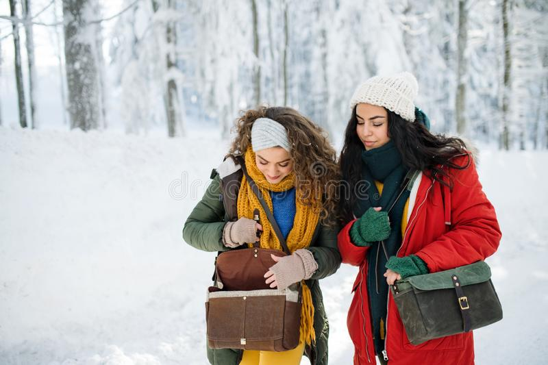 Young cheerful friends on a walk outdoors in snow in winter forest. royalty free stock images