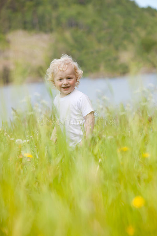 Download Young Child in Tall Grass stock image. Image of caucasian - 21193245