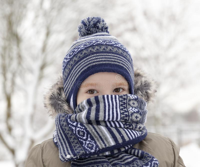 Child in winter, portrait. Young child while walking along the forest. winter time, the child hid in a warm scarf royalty free stock image