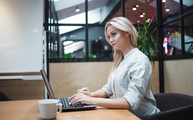 Young confident woman working on a laptop in the office. royalty free stock image
