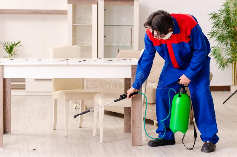 Young contractor doing pest control at home. The young contractor doing pest control at home royalty free stock photos
