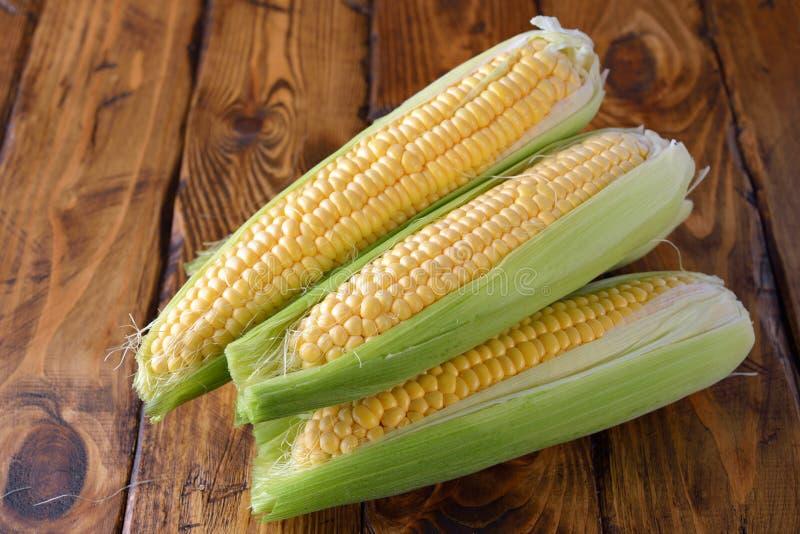 Young corn cobs stock photos