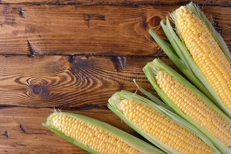 Young corn cobs royalty free stock image