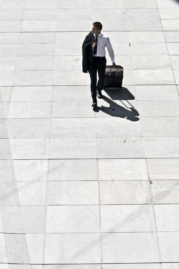 Download Young Corporate Man With Luggage Royalty Free Stock Photo - Image: 10338855