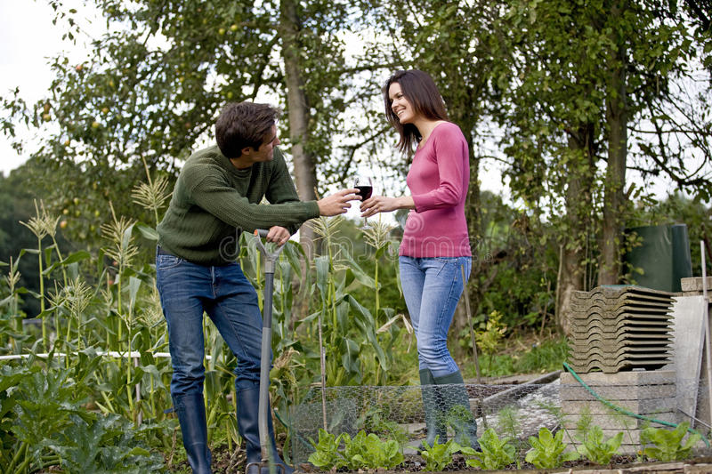 A young couple on an allotment taking a break, drinking wine royalty free stock image