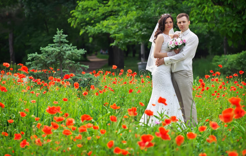 Young couple in the area of red poppies in the park. royalty free stock image