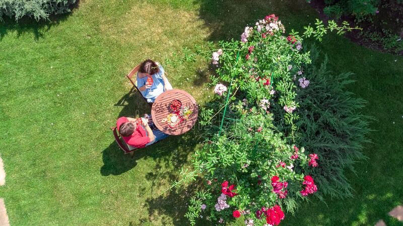 Young couple enjoying food and wine in beautiful roses garden on romantic date, aerial top view from above of man and woman eating royalty free stock image