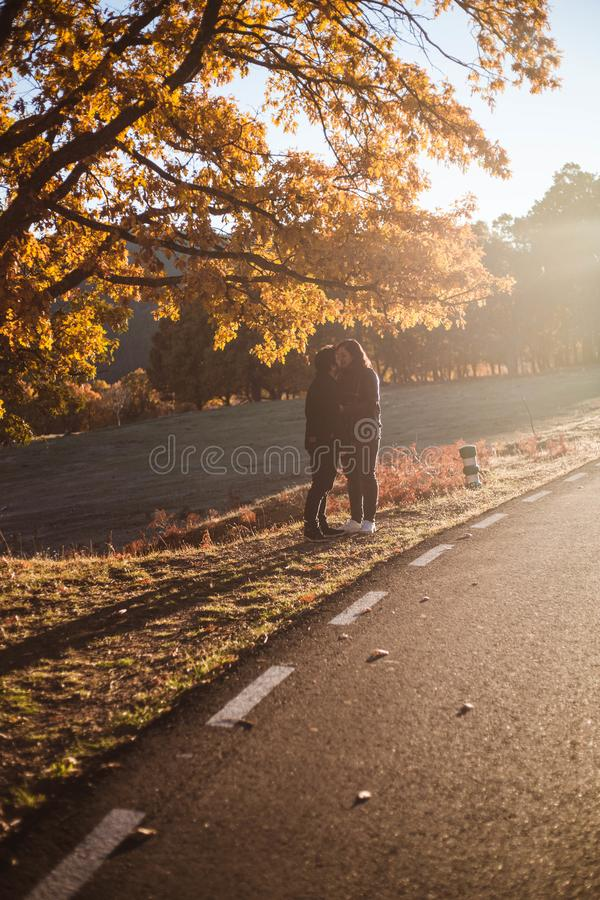 Young couple kissing along asphalt road in colorful autumn beech and oaks forest. Autumn road in mountains. Love and nature royalty free stock photography