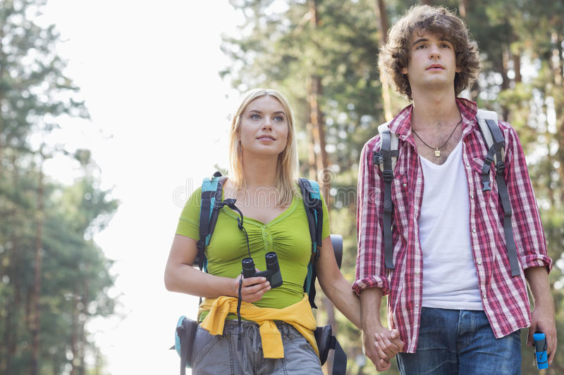 Young couple looking away while hiking in forest royalty free stock images