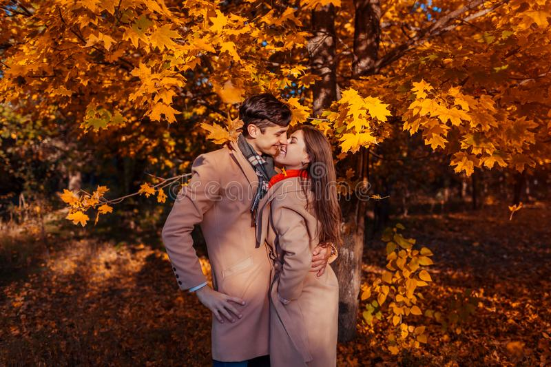 Young couple in love walks in autumn forest among falling leaves. Stylish people hugging stock photography