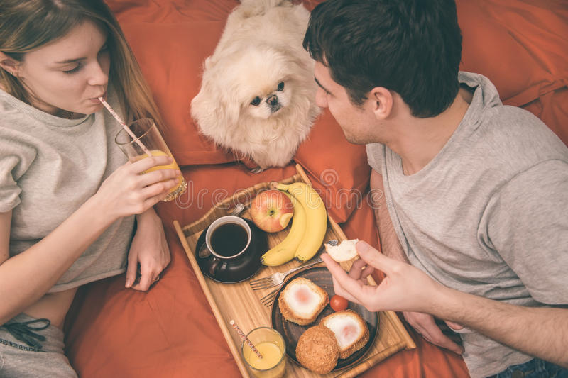 Young couple is lying in bed with dog . stock photo