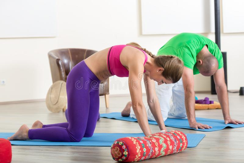 Couple performing yoga pose stock photography