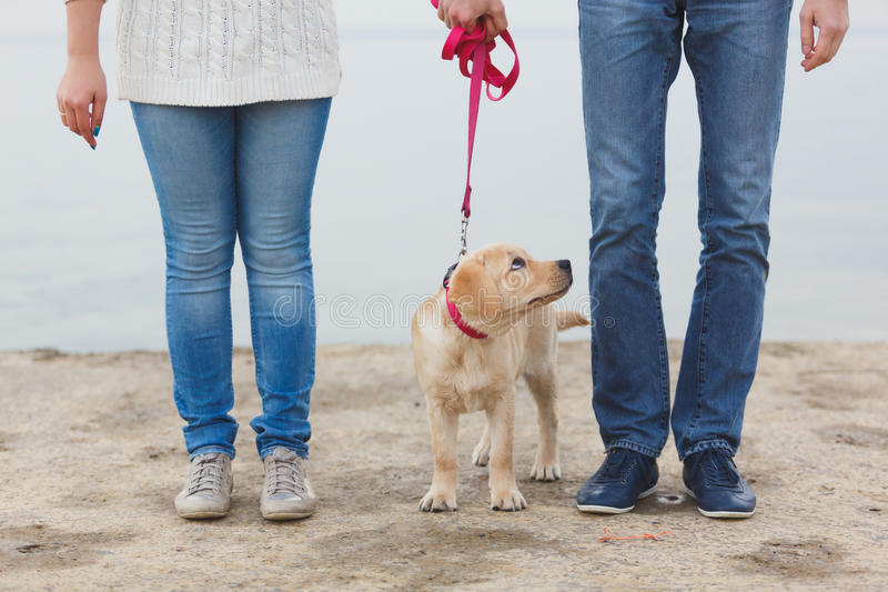 Young couple running along the beach with their dog. royalty free stock photo