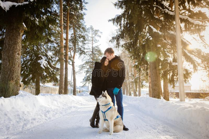 Young couple with a Siberian husky dog, winter forest sun royalty free stock photos