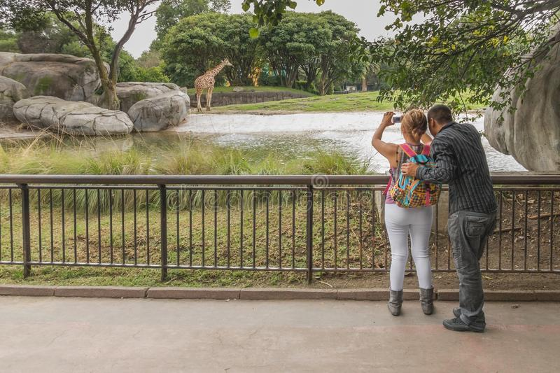 Young couple taking pictures in a zoo of Mexico City. royalty free stock photo