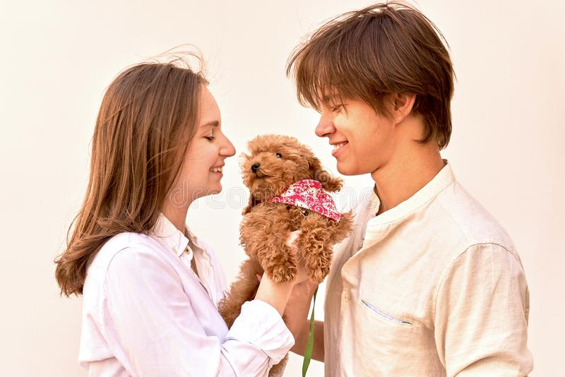 Young couple with their cute ginger poodle puppy. royalty free stock photo