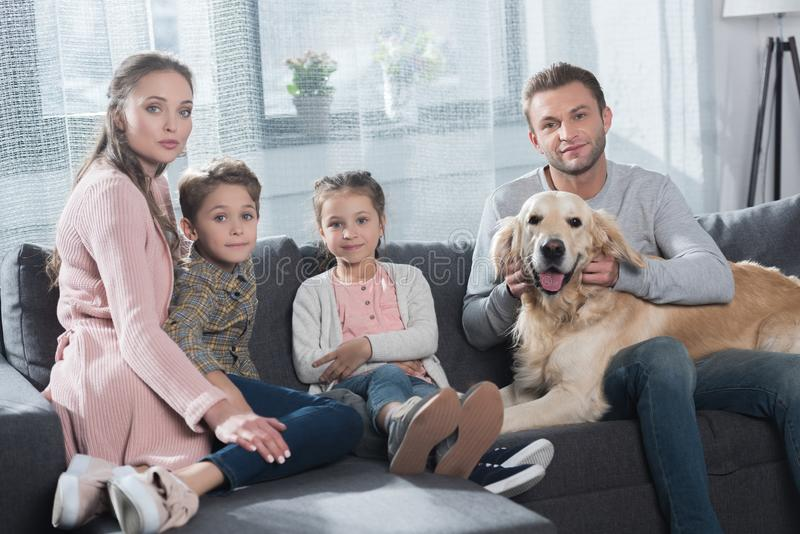 Young couple with two kids sitting on couch in living room and petting royalty free stock images