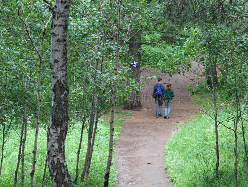 Young couple walking forest. Nature and human relations scene: young romantic couple (man and woman) in love walking by a path in the summer or spring forest stock photos