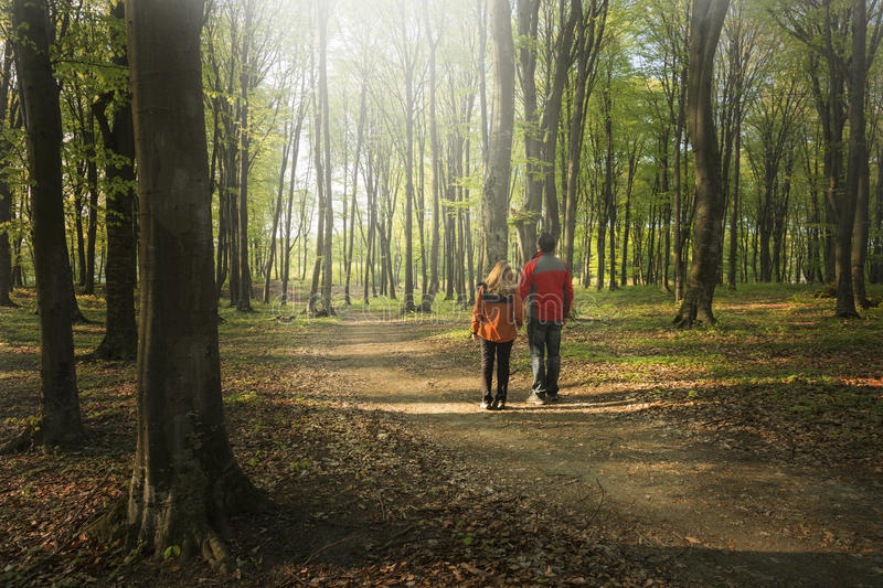 Young couple walking in the forest. At sunset time stock image