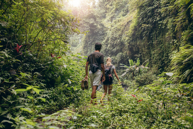 Young couple walking through woods stock images