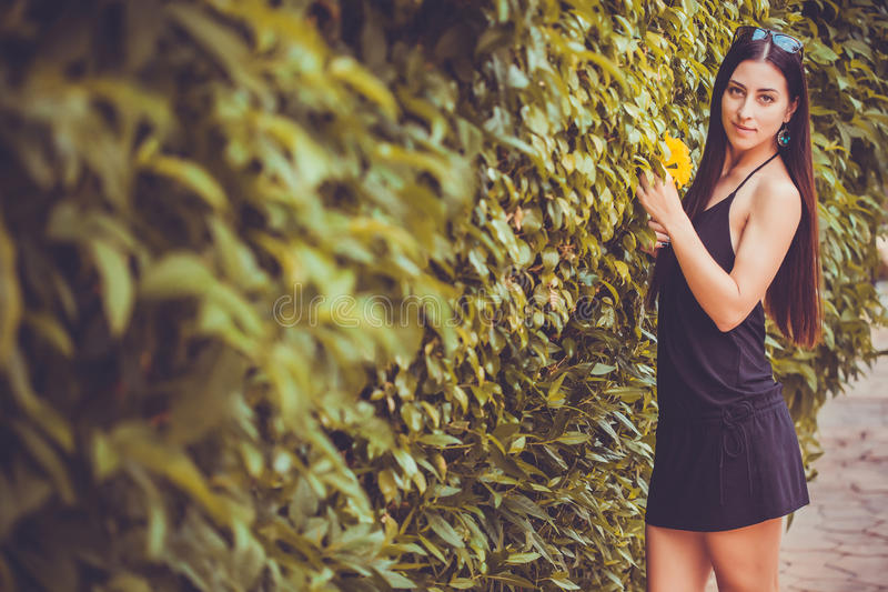Young cute woman posing in a green park stock images