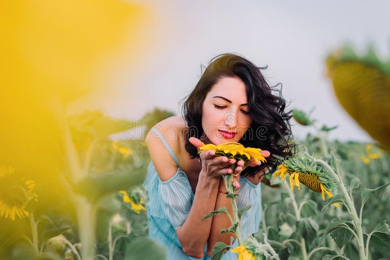 Young darkhaired woman in the sunflowers field is smelling sunflowers. Young darkhaired woman in the sunflowers field is is smelling sunflowers, free happy life stock image