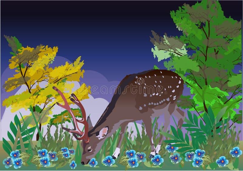 Young deer between blue flowers. Illustration with young deer between blue flowers royalty free illustration