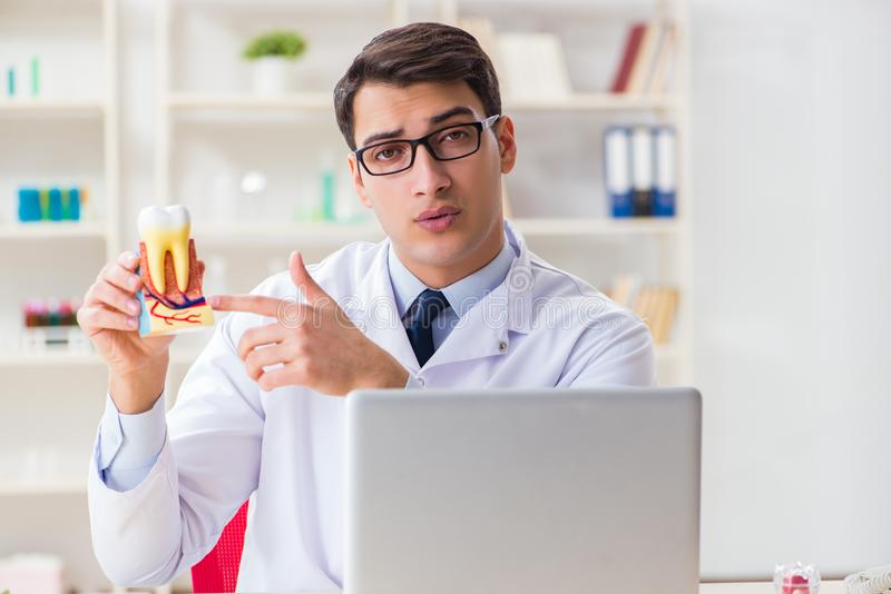 The young dentist working in the dentistry hospital stock photo