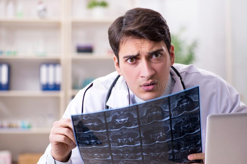 The young doctor looking at x-ray images in clinic. Young doctor looking at x-ray images in clinic royalty free stock image