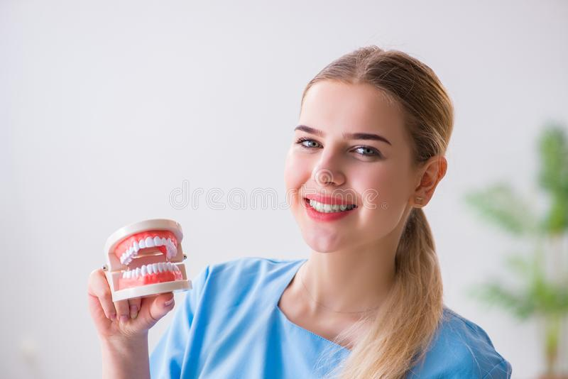 The young doctor nurse with dentures. Young doctor nurse with dentures royalty free stock photography