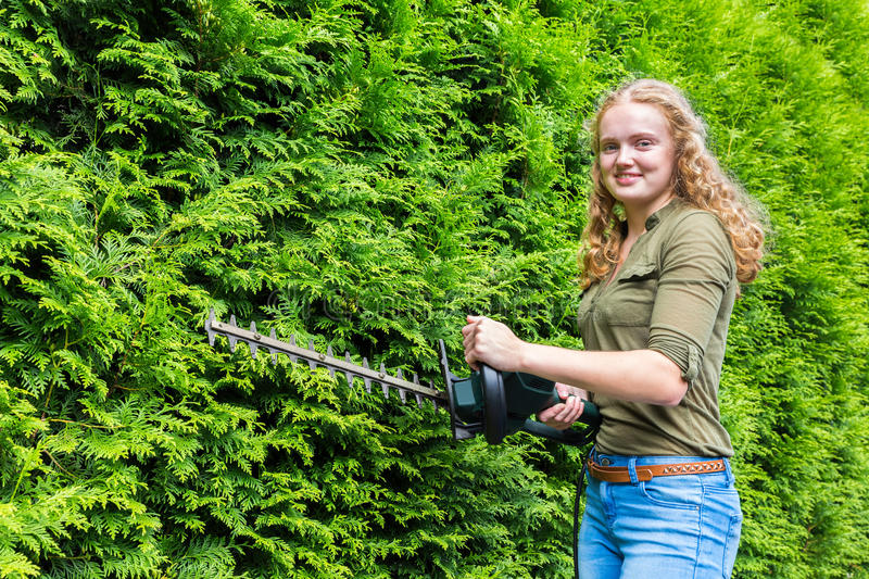 Young dutch woman holding hedge trimmer at conifers. Young caucasian woman holding hedge trimmer at green conifers stock photo