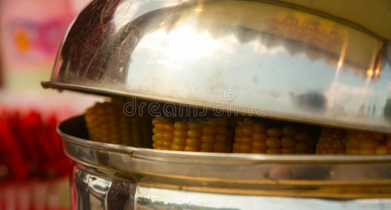 The young ears boiled corn in a street cafe royalty free stock image