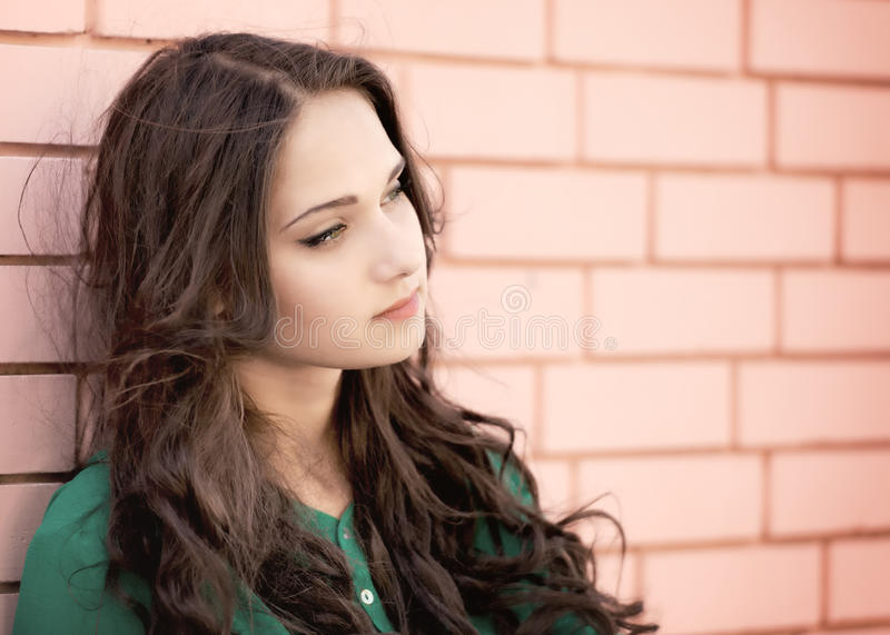 Young elegant woman on a brick wall backround stock photos