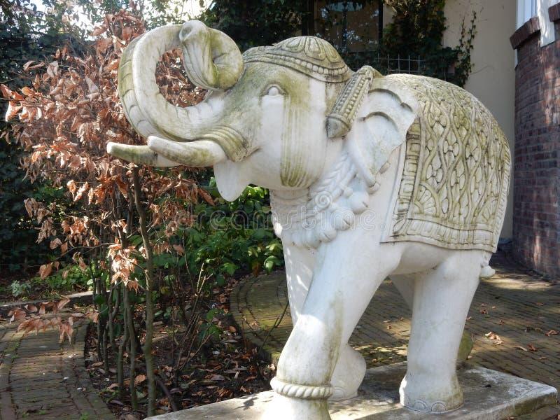 Superior Download Young Elephant Of White Stone Stock Image   Image Of Netherlands,  White: 54899711