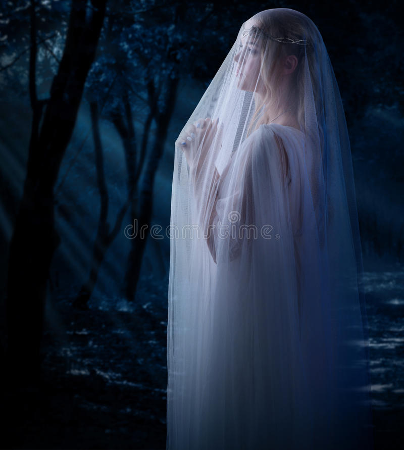 Young elven girl. Elven girl in the forest royalty free stock photos