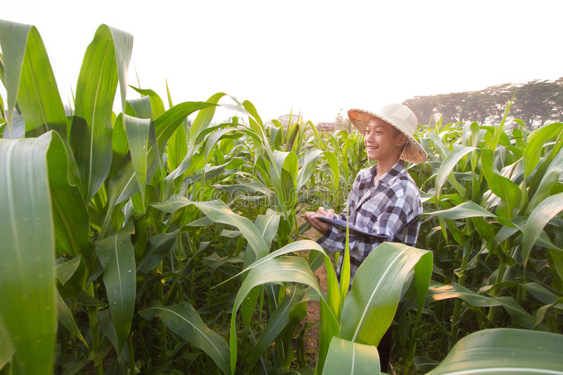 Young environmentalist enjoy with studying biology. At farm stock photos