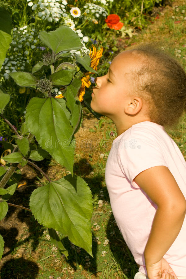 Young Ethnic Girl smelling the flowers stock image