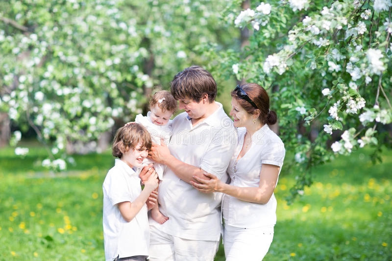Young family in a beautiful apple tree garden royalty free stock photography