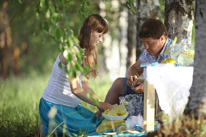 Young family on summer picnic stock image