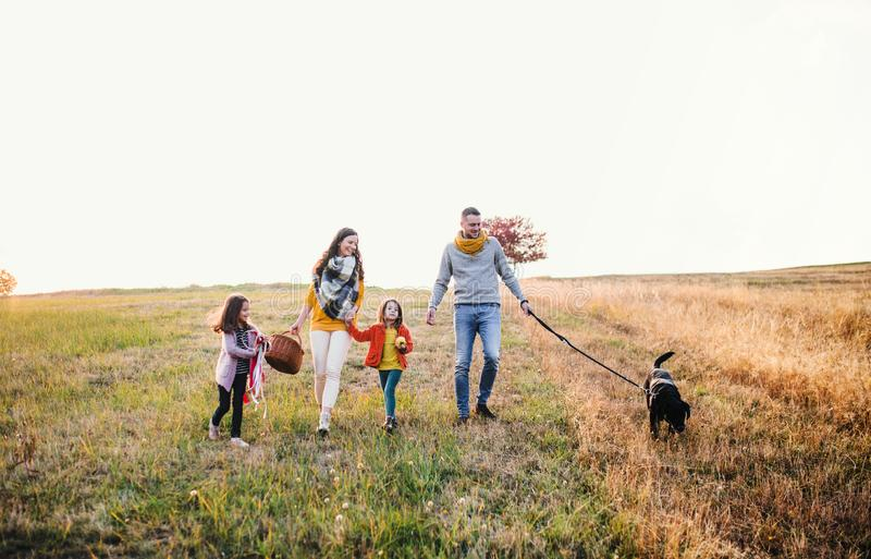 A young family with two small children and a dog on a walk in autumn nature. royalty free stock photos